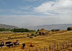 Volunteer Ethiopia