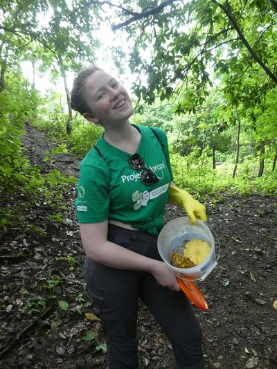 Amelie putting fruit out for the butterfly traps