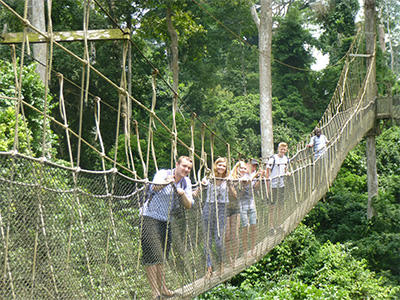 The Ackworth School students enjoying their weekend exploring the Kakum National Park from the canopy walkway