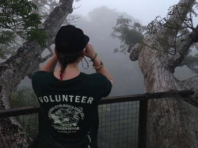 A volunteer on the canopy during a bird watching activity