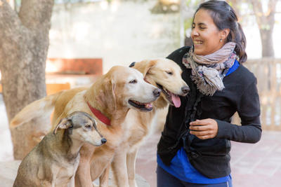 A volunteer pets the dogs at the dogs shelter in Cordoba, Argentina.