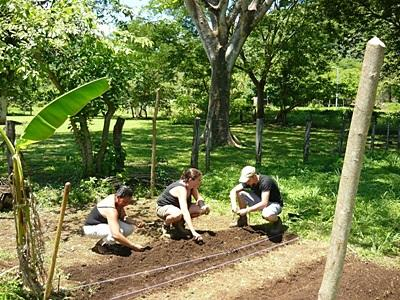 Forest Conservation work in Costa Rica