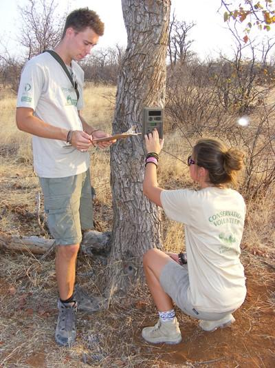 Two conservation volunteers help to set up camera traps in the South African bush.