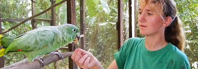 A volunteer feeds a nut to a friendly green bird.