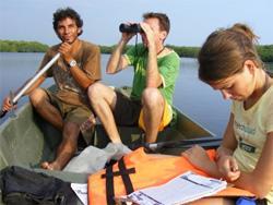 Volunteer Spanish & Conservation
