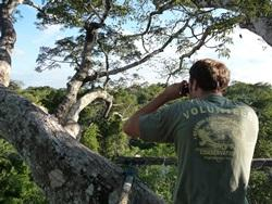 Volunteer Conservation in Peru
