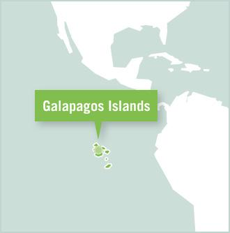 A map shows the position of the Galapagos Islands in Ecuador