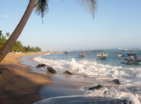 Traditional fishing boats on the Sri Lankan coast