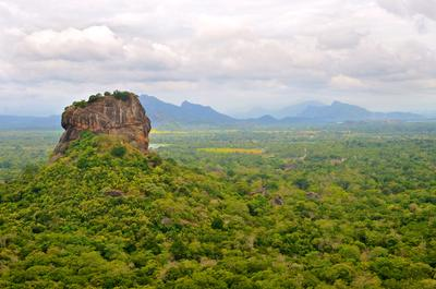 A volunteer climbed up Pidurangala Rock to get a scenic shot of Sigiriya emerging from the forests