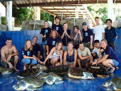 Conservation Volunteers with Sea Turtles in Thailand